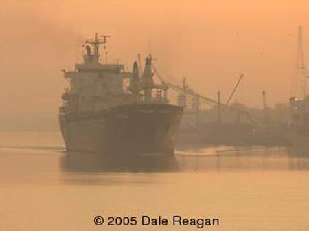 USA-Georgia-Savannah-Container ship on the Savannah River at dawn.